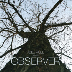 Joel Mull - The Observer LP - VINYL - CD