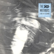 Waterboys, The - A Girl Called Johnny LP - VINYL - CD