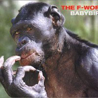 Babybird - The F-Word LP - VINYL - CD