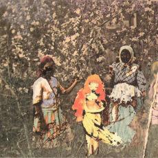Paavoharju - Laulu Laakson Kukista LP - VINYL - CD