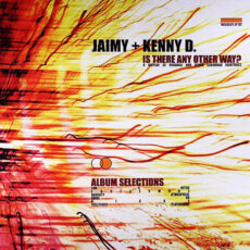 Jaimy + Kenny D.* - Is There Any Other Way? - A Display Of Roadkill And Other Suburban Fairytales (Album Selections) LP - VINYL - CD