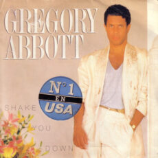 Gregory Abbott - Shake You Down LP - VINYL - CD