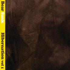 Various - Hibernation Vol. 1 LP - VINYL - CD