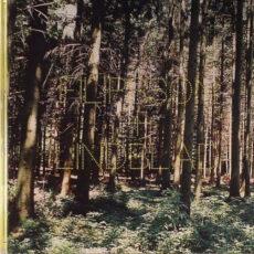 Filipsson* & Lindblad* - A Splendor In The Grass LP - VINYL - CD