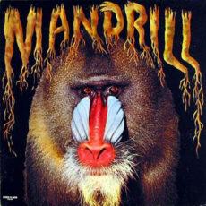 Mandrill - Mandrill LP - VINYL - CD