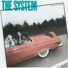 System, The - Don't Disturb This Groove LP - VINYL - CD