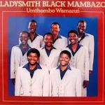 Ladysmith Black Mambazo - Umthombo Wamanzi LP - VINYL - CD