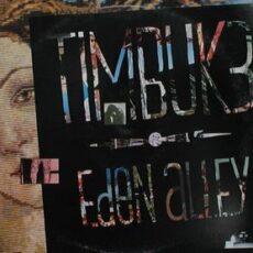 Timbuk 3 - Eden Alley LP - VINYL - CD