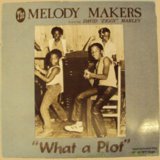 "Melody Makers* Featuring David ""Ziggy"" Marley* - What A Plot / Children Playing In The Street LP - VINYL - CD"