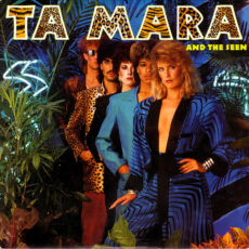 Ta Mara And The Seen* - Ta Mara & The Seen LP - VINYL - CD
