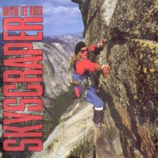 David Lee Roth - Skyscraper LP - VINYL - CD