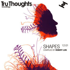 Robert Luis - Shapes 12:01 LP - VINYL - CD