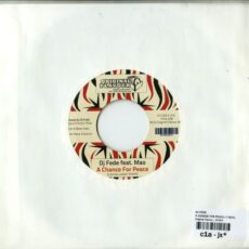 Dj Fede - A Change For Peace LP - VINYL - CD