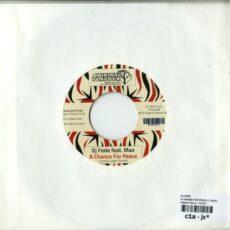 Dj Fede - A Change For Peace LP - VINYL - CD