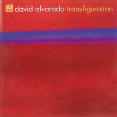 David Alvarado - Transfiguration LP - VINYL - CD
