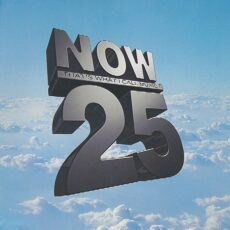 Various - Now That's What I Call Music 25 LP - VINYL - CD