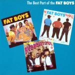 Fat Boys - The Best Part Of The Fat Boys LP - VINYL - CD