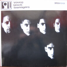 Young Black Teenagers - Young Black Teenagers LP - VINYL - CD