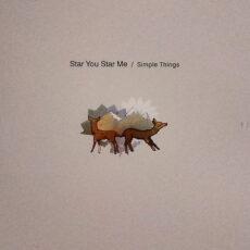 Star You Star Me - Simple Things LP - VINYL - CD